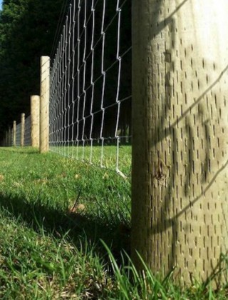Fencing Stakes