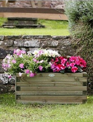 Planters & Grow Your Own