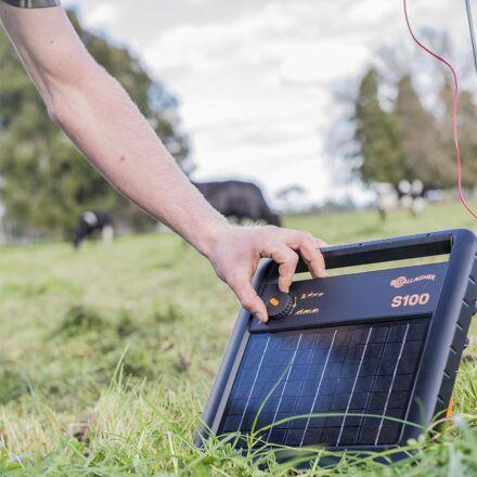 Gallagher S100 solar energiser + Free Earth Stake