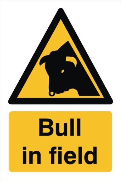 Raymac Bull In Field Sign