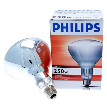 Philips Infra Red Bulb - 250W Clear