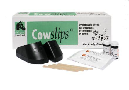 Cow Slips 10 PK
