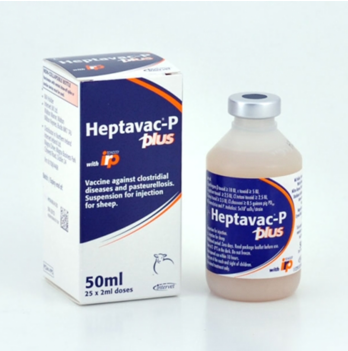 Heptavac P