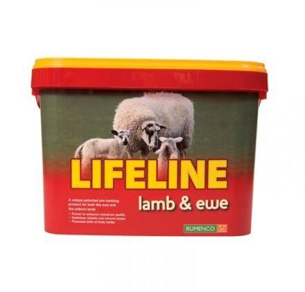 Lifeline Ewe & Lamb Bucket
