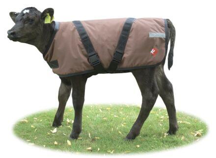 Dairy Spares Premium Calf Coat 65cm