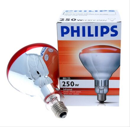 Philips Infra Red Bulb - 250W Ruby