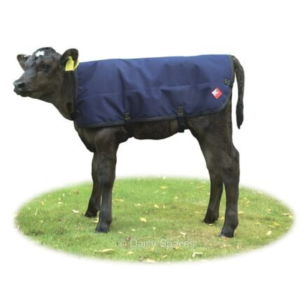 Dairy Spares Standard Calf Coat 80cm Blue