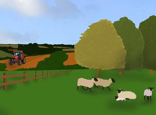 Environment Illustration